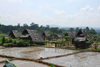 Ceylon Mines