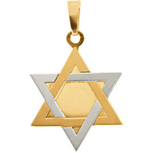 Two Tone Gold Star of David Pendant